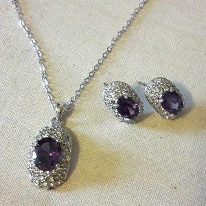 Jewelry - 💝February Birthstone Necklace Earrings Set